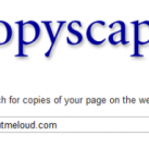 CopyScape: Blogger Tool to find Who is Copying your post