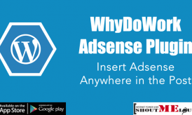 WhyDoWork Adsense Plugin : Insert Adsense Anywhere in the Post