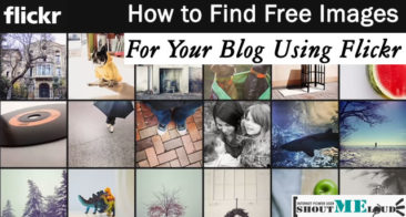 How To Find Free Images For Your Blog Using Flickr