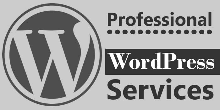 Professional WordPress Services