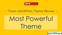 Thesis WordPress Theme Review – Most Powerful Theme