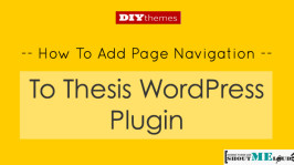 How to add Page Navigation To Thesis WordPress Plugin