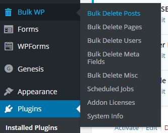 Bulk Delete WordPress plugin