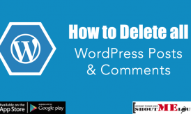 How to Delete all WordPress Posts and Comments