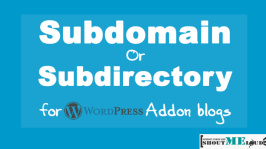 Subdomain Or Subdirectory for WordPress Addon blogs