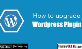How to upgrade WordPress Plugin Correct Way