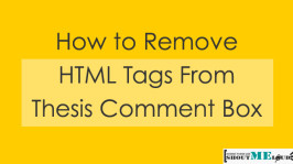 How to Remove  HTML Tags From Thesis Comment Box