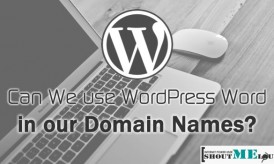 Can We use WordPress Word in our Domain Names?