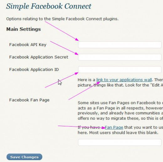 Integrating Facebook Friend Connect with Thesis WordPress Theme