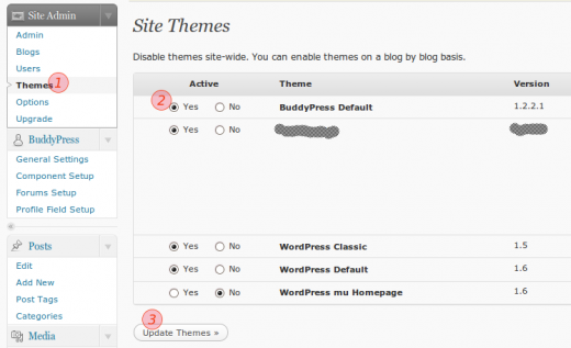 Site Admin Themes