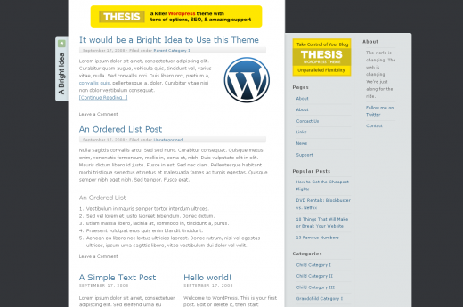 bright idea1 520x345 16 Best and Free Thesis Skins For Thesis Theme