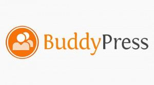 buddypress 300x166 BuddyPress: Build a Community with Wordpress