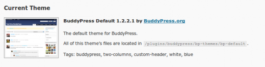 Activate Buddypress Theme