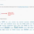 How to Install Buddypress in WordPress MU