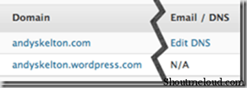 WordPress.com Enabled DNS Editing Feature