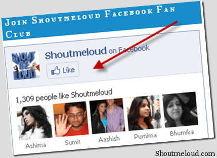 Facebook Fan Pages Added Like button