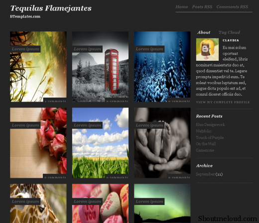 tequilas 520x448 Best Free and Professional Photo blog Templates for Blogspot