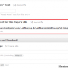 How To Use 301 Redirect To Hide Affiliate Link in Thesis 1.7?