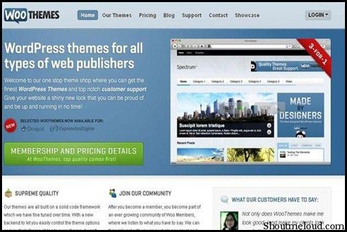 WooThemes Best Premium WordPress Themes Club