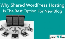 Why Shared WordPress Hosting is the Best Option for New Blogs