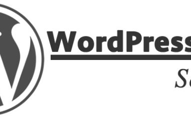 WordPress SEO Service