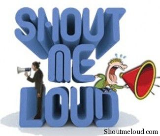 Shoutmeloud Monthly Income Report June 2010
