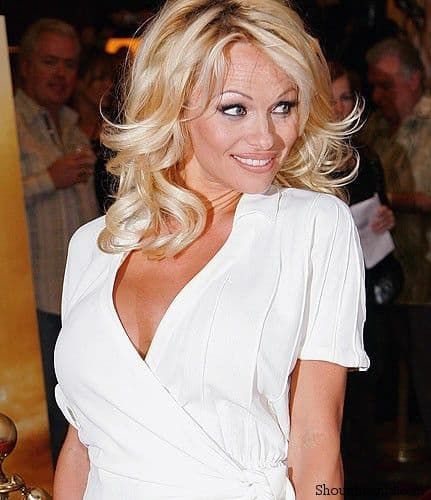 Pamela Anderson 0 Google Instant Blacklists 2600 words Including Pamela Anderson