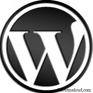 wordpress logo 300x300 5 Practices that No Blogger Should Forget