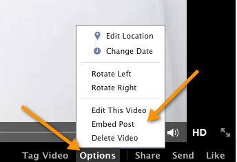 Embed Post How to Embed a Facebook Video on Your Website or Blog Post