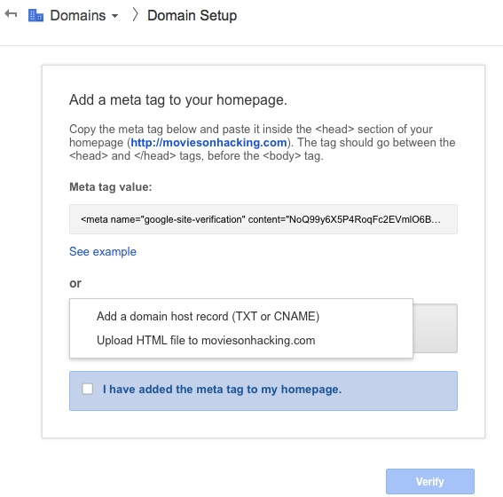 Google apps domain verification How to Set up Google Apps Standard on Bluehost cPanel