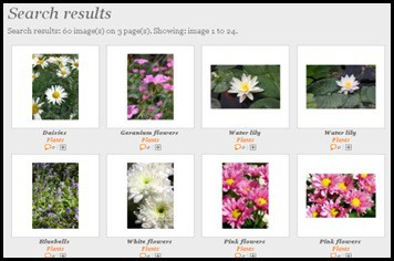 Photogen 5 Websites to Download Free Stock Images