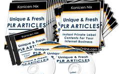 5 Beneficial Uses Of PLR Articles