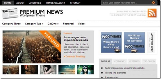 premiumnews thumb 5 Best Premium Like Free Magazine Style WordPress Themes