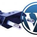 Basic WordPress Plugins