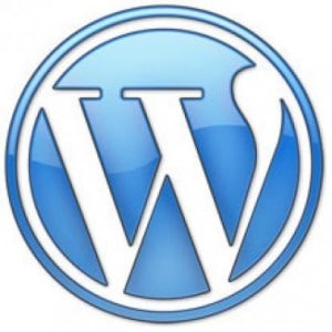 wordpress logo WordPress SEO Service