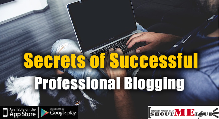 Professional Blogging Secrets