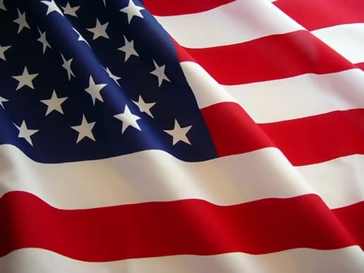u.s.a flag U.S. Government's Shallow Attempt at Social Media Infiltration