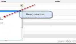 How to Delete Custom Field value from WordPress Database