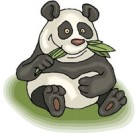 Google Panda Algorithm Launched Globally for English Users
