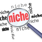Why Nicheless Blogs can't Compete with Niche Blog