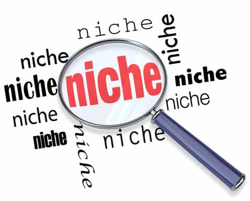 Why Nicheless Blogs can't Compete with Niche Blogs