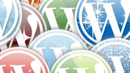 5 Premium WordPress Gallery Themes