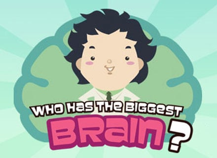 who has the biggest brain Top 3 Facebook Social Games