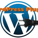 Thumbnail image for Google Panda WordPress Plugins to Kick Panda Back to The Jungle
