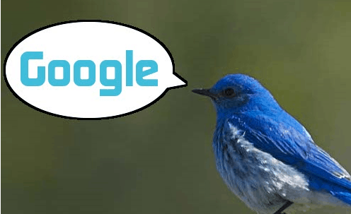 TwitterGoogle How to Do Link Building Using Twitter