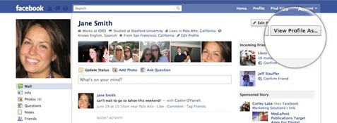 View Profile As Facebooks New Privacy Settings: A Google+ Rip off?