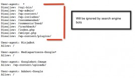 How To Optimize WordPress Robots.txt File For Search Engine Bots