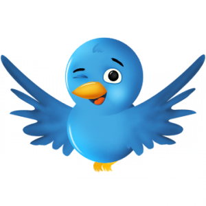 twitter bot 300x300 How to Write a Twitter Bio to Get Followers