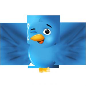 Write Twitter Bio
