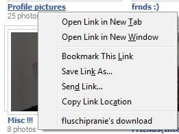 fluschipranies download How to Download Facebook Albums in One Click